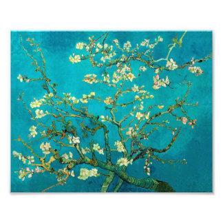 Arte floral floreciente del árbol de almendra de fotografías