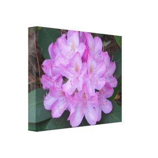 Arte floral maravillosamente rosado de la lona impresion de lienzo