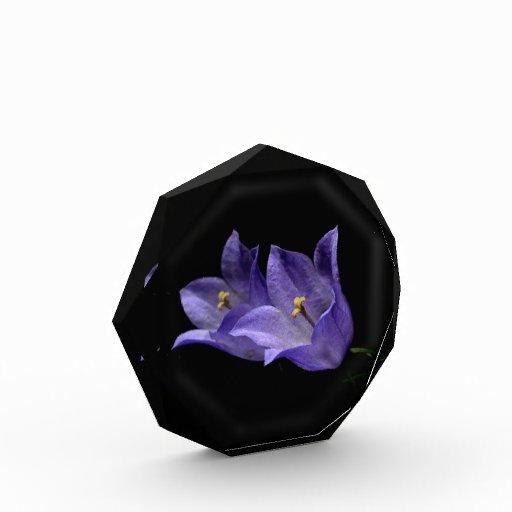 Arte floral púrpura