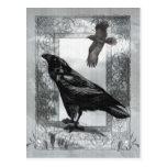 Arte gótico de la fantasía del cuervo del tarjetas postales