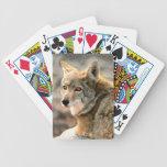 Arte gráfico de la lluvia del lobo barajas de cartas