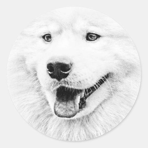 Arte hermoso del perro del samoyedo pegatina redonda