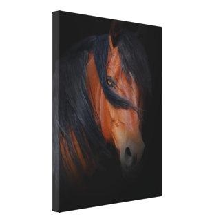 Arte hermoso y dramático del caballo en lona lienzo envuelto para galerias