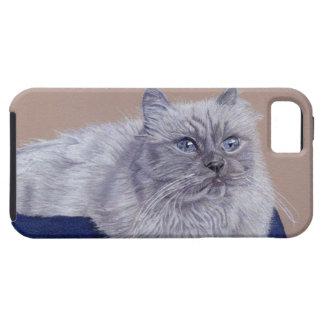 Arte Himalayan adorable del gato Funda Para iPhone SE/5/5s
