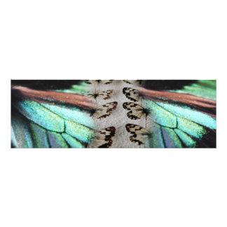 """""""ARTE ideal de la foto de la mariposa de la forma Fotografías"""