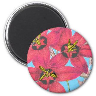 Arte impreso vintage floral del dibujo del ejemplo imán redondo 5 cm