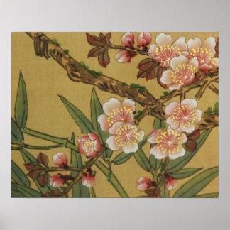 Arte japonés asiático de las flores de cerezo póster