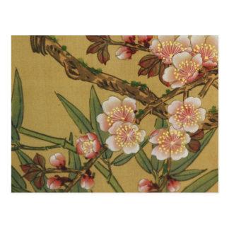 Arte japonés asiático de las flores de cerezo postal