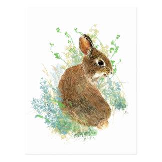 Arte lindo del animal del conejo de conejito de la postales