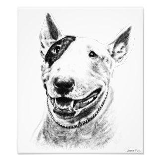 Arte lindo del perro de bull terrier fotografía