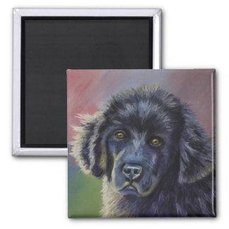 Arte lindo del perro de perrito de Terranova - Imán Cuadrado