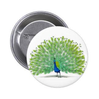 Arte magnífico del pavo real pin redondo de 2 pulgadas