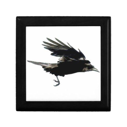 Arte negro de la fauna del cuervo que vuela caja de joyas