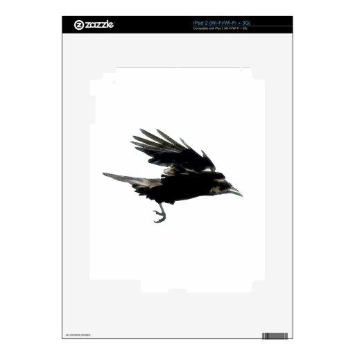 Arte negro de la fauna del cuervo que vuela skins para eliPad 2