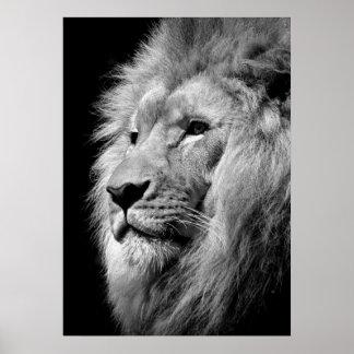 Arte negro y blanco del león/animal de la póster