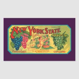 Arte Nueva York del cajón de las uvas del vintage Pegatina Rectangular