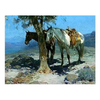 "Arte occidental ""noche silenciosa"" de Frank Tenney Tarjetas Postales"