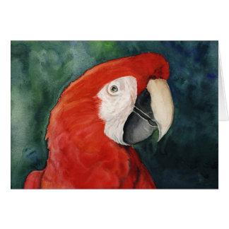 """""""Arte original Notecard del Macaw del escarlata"""" Tarjeta De Felicitación"""