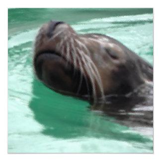 "Arte perezoso del león marino invitación 5.25"" x 5.25"""