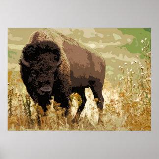 Arte pop americano del búfalo del bisonte póster