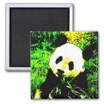 Arte pop de la cara de la panda imán para frigorifico