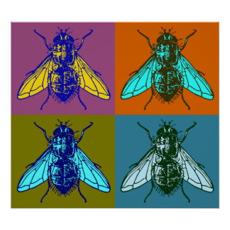 Arte pop de la mosca poster