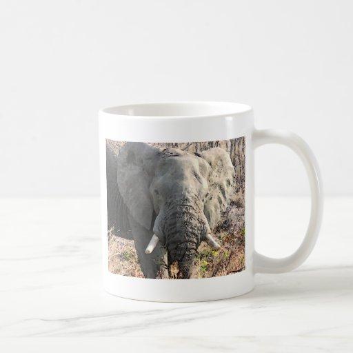 Arte pop del elefante taza