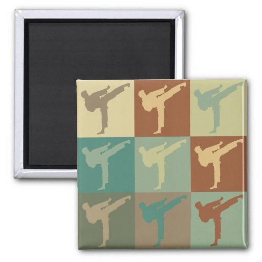 Arte pop del karate imanes