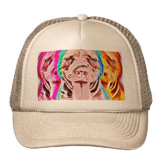 Arte pop del pitbull gorro
