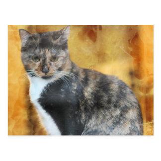 Arte popular, gato de calicó en fondo del oro/del  postal