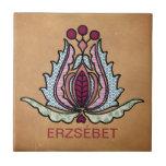 Arte popular húngaro azulejos