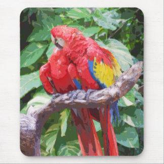 Arte Preening del Macaw del escarlata Alfombrillas De Ratones