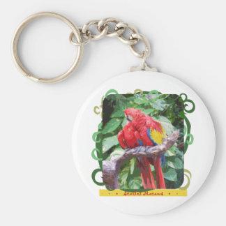 Arte Preening del Macaw del escarlata Llaveros Personalizados