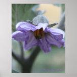 Arte púrpura de la flor impresiones