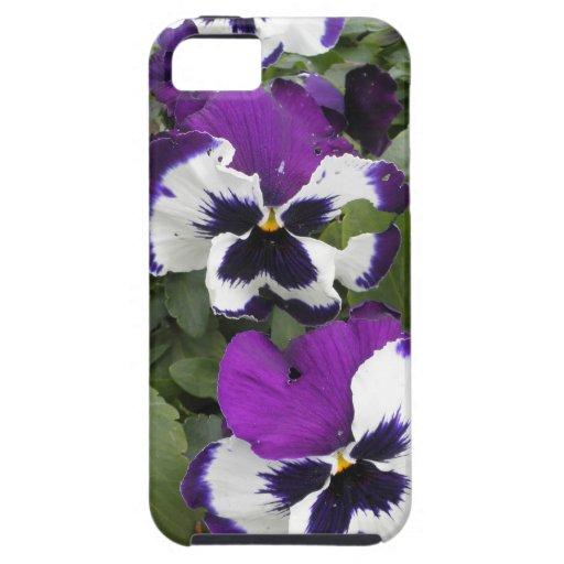 Arte púrpura y blanco precioso del pensamiento iPhone 5 fundas