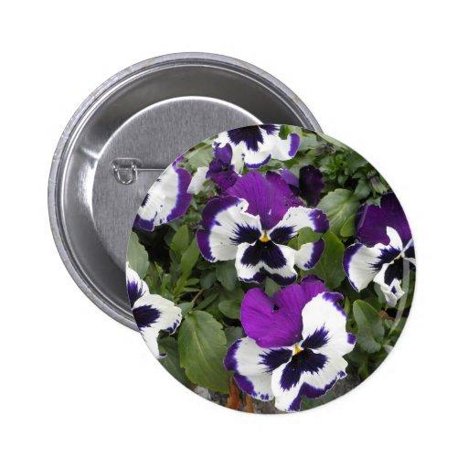 Arte púrpura y blanco precioso del pensamiento pin