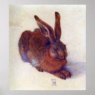 Arte renacentista, liebre joven de Albrecht Durer Póster