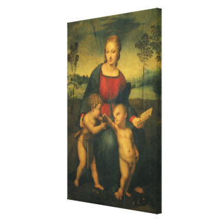 Arte renacentista, Madonna del Goldfinch, Raphael Lona Estirada Galerías