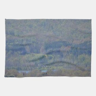 Arte representado toallas de cocina