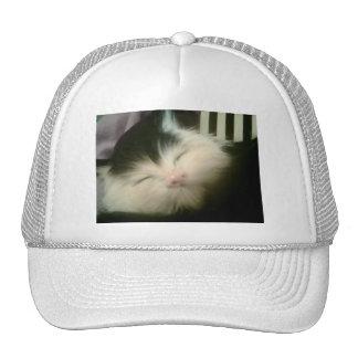Arte retro del gato del gatito del gatito blanco d gorras de camionero