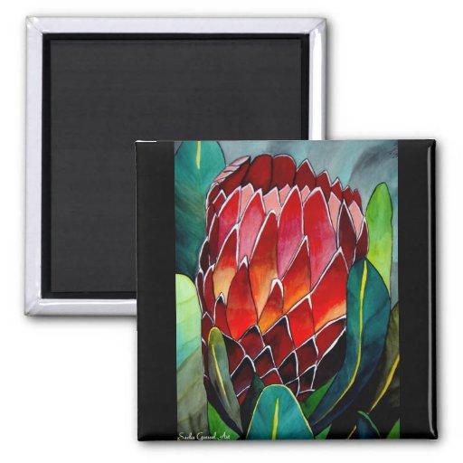 Arte rojo de la original de la flor del watercolou imán de nevera