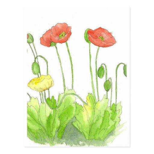 Arte rojo del jardín del Wildflower de la acuarela Tarjetas Postales