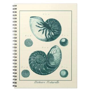 Arte rojo y verde del Seashell Note Book