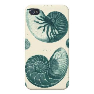 Arte rojo y verde del Seashell iPhone 4/4S Carcasas