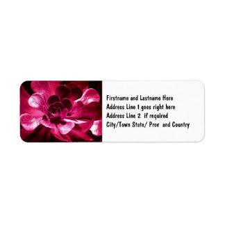 Arte rosado bonito de la flor etiquetas de remite