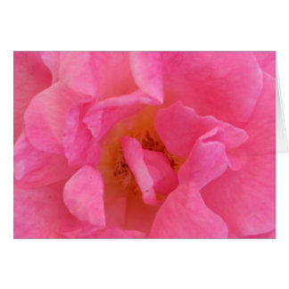 Arte rosado del pétalo color de rosa - tarjeta de felicitación
