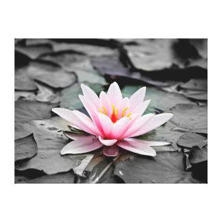 Arte rosado hermoso del zen de Waterlily de la Impresión En Lona Estirada