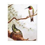 Arte Rubí-Throated realista del colibrí Impresión En Lienzo Estirada
