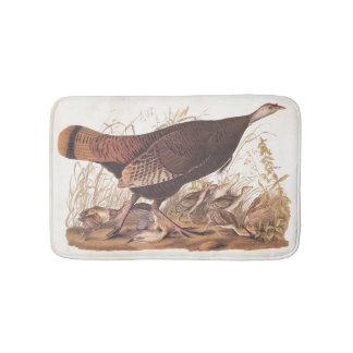 Arte salvaje de Audubon del vintage de la gallina