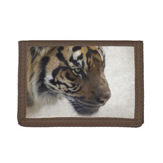 Arte salvaje de la fauna del tigre del tigre de Su